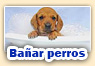 Juegos de baar perros
