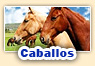 Juegos de caballos
