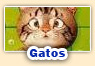 Juegos de gatos