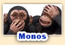 Juegos de monos